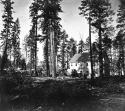 667. Zephyr Cove House - Eastern shore Lake Tahoe.